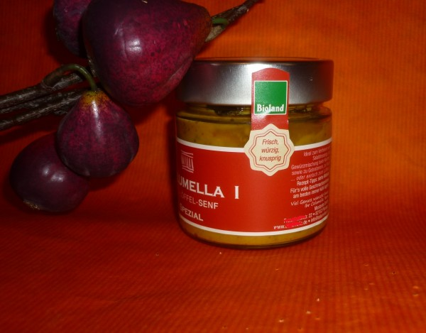 Feigen Chili Bio Senf 200ml -Spezial - vegan