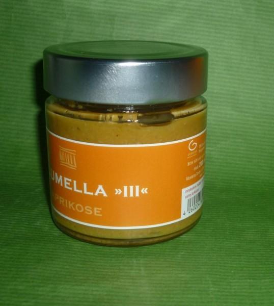 Aprikosen ( Marillen ) Bio Senf 200ml vegan